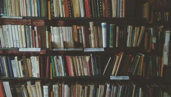 bookcase, books, bookshelves